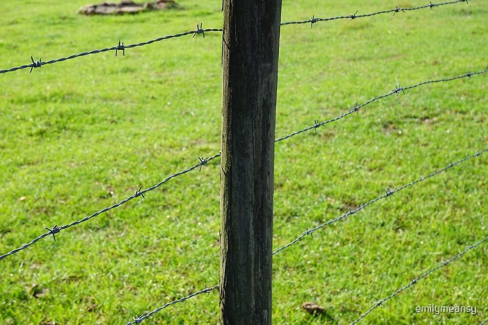 Farm Fence by emilymeansy