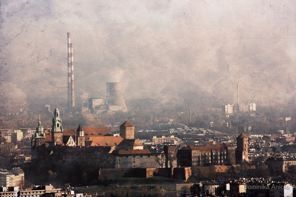 Wawel from above by Dominika Aniola