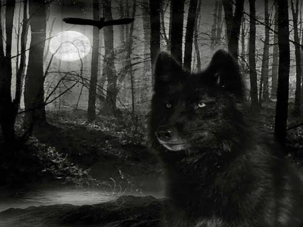 Dark Wolf & Crow by kiddruba