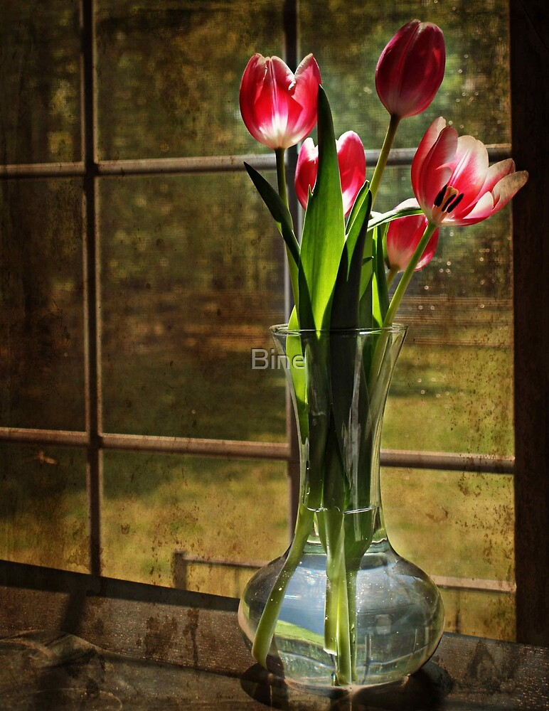 Still Life with Tulips by Bine