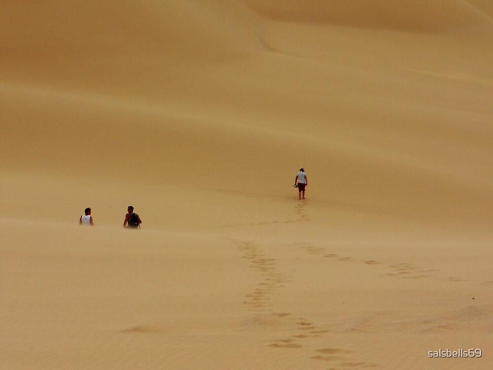 Dunes Walk by salsbells69