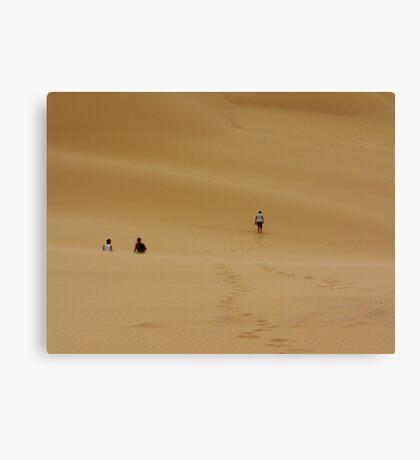 Dunes Walk Canvas Print