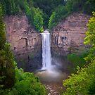 Taughannock Falls by David Lamb