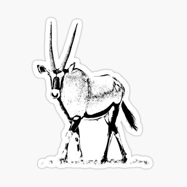 Male Gemsbok | African Wildlife Sticker