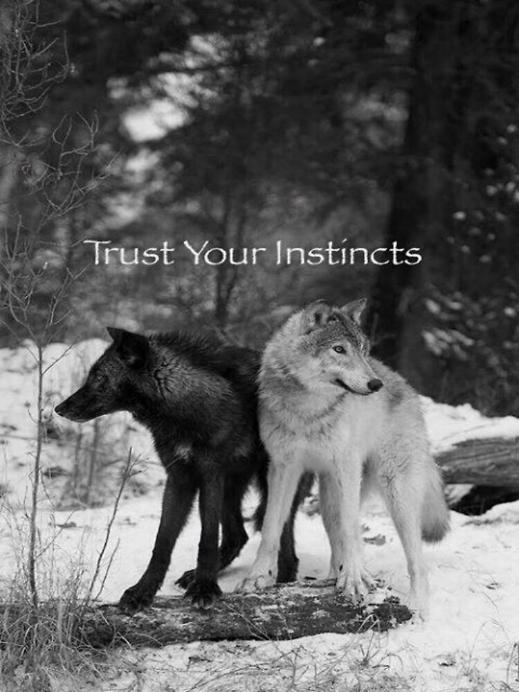 Trust Your Instincts by kiddruba