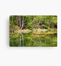 the mirrored tree Canvas Print