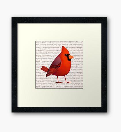 Masked Cardinalis Framed Print