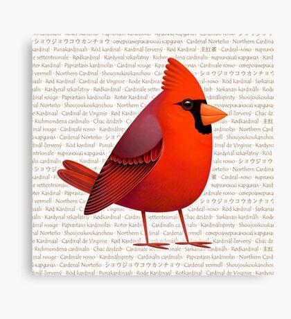 Masked Cardinalis Canvas Print