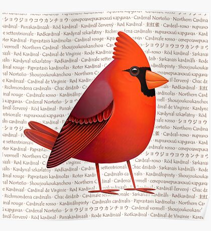 Masked Cardinalis Poster