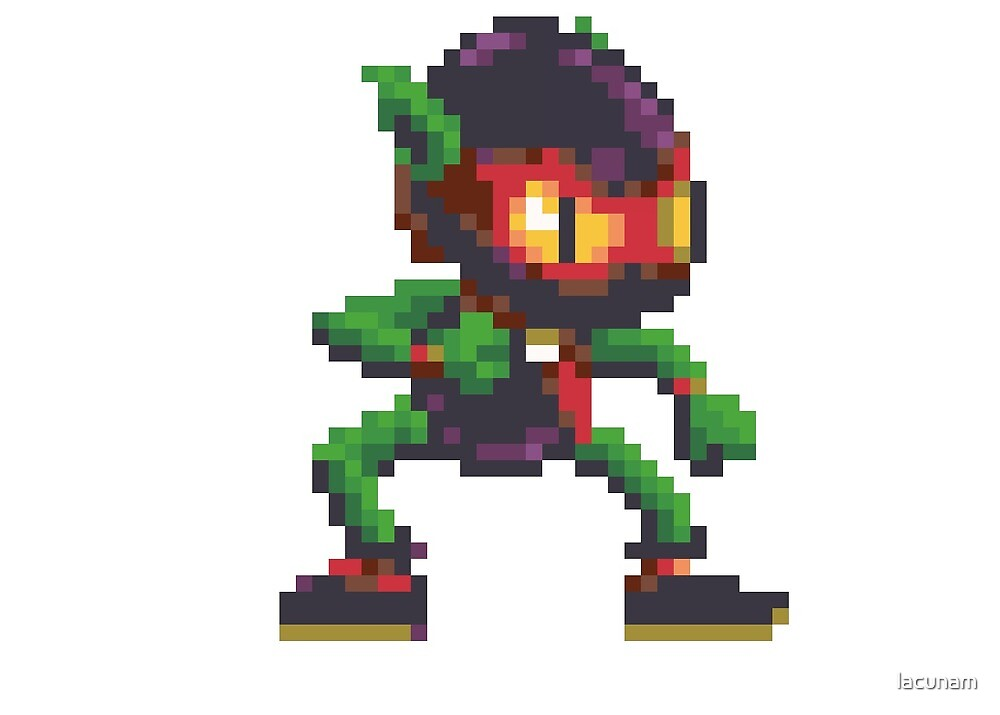 Zool by lacunam