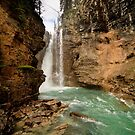Johnston Canyon Falls by dlhedberg