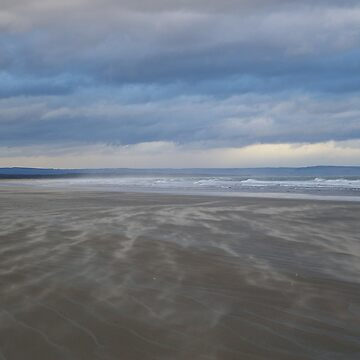 Windswept Beach, St Andrews by becca305