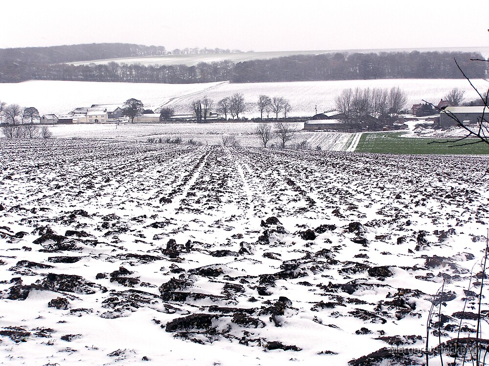 Snow on the Yorkshire Wolds by Margaret Hockney