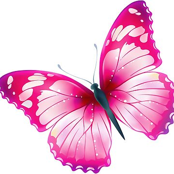 Pinky Butterfly by domidurand