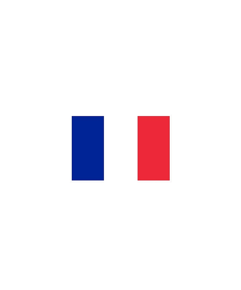 France Flag National Pride  by TrevelyanPrints