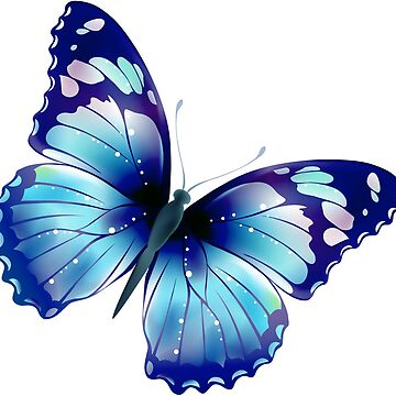 Blue Butterfly by domidurand