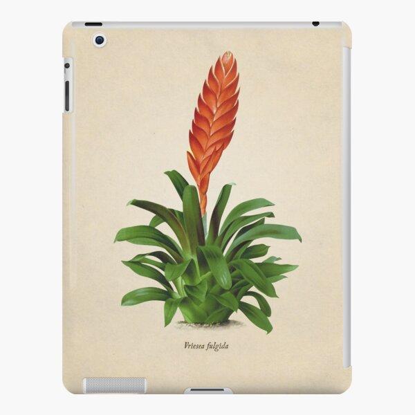 Vriesea fulgida old plate Funda rígida para iPad