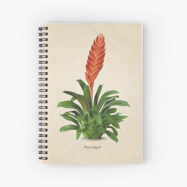 Vriesea fulgida old plate Cuaderno de espiral