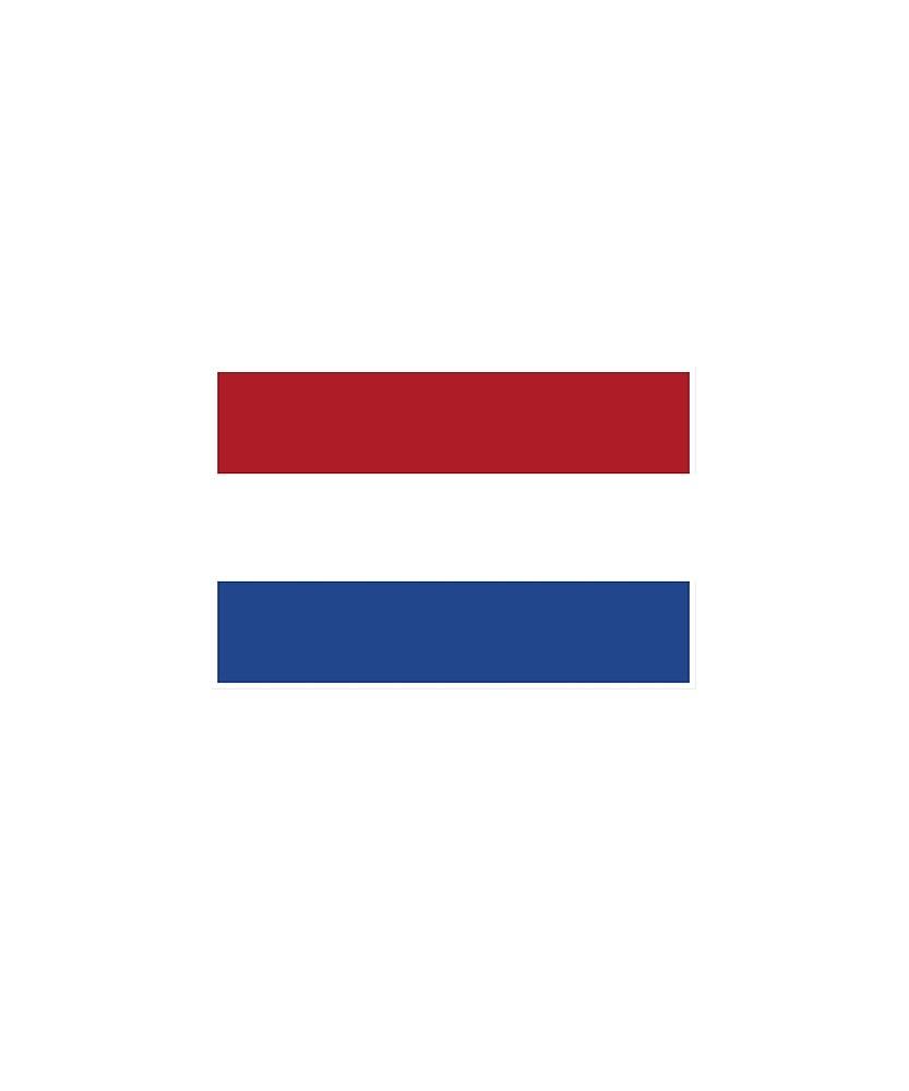 Netherlands Flag National Pride by TrevelyanPrints