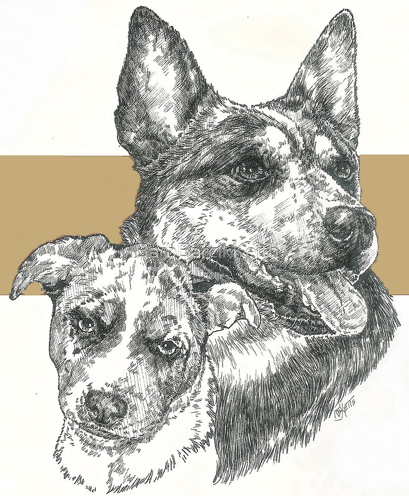 Australian Cattle Dog, Father & Son  by BarbBarcikKeith