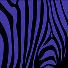 Blue Zebra by Darlene Lankford Honeycutt