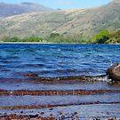 Lake View by trish725