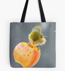 Remind Me Again...Why Is Wind Tunnel Testing Necessary? - Silver-Eye NZ Tote Bag
