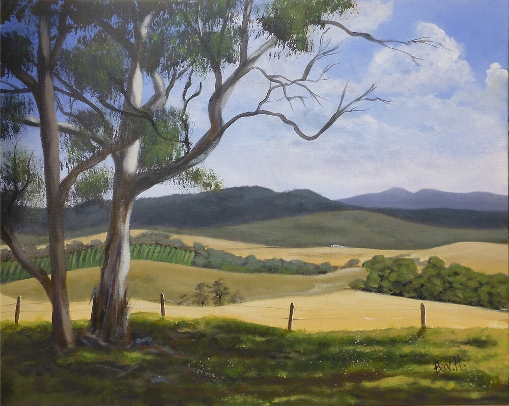'Valley View' by Bev Hardidge