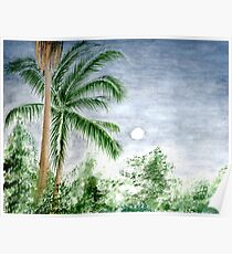 Palm Trees at Dusk Poster