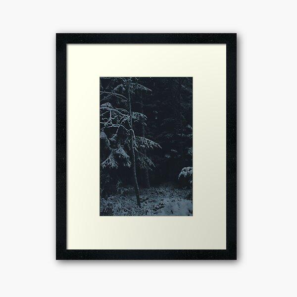 Winter Dark Framed Art Print