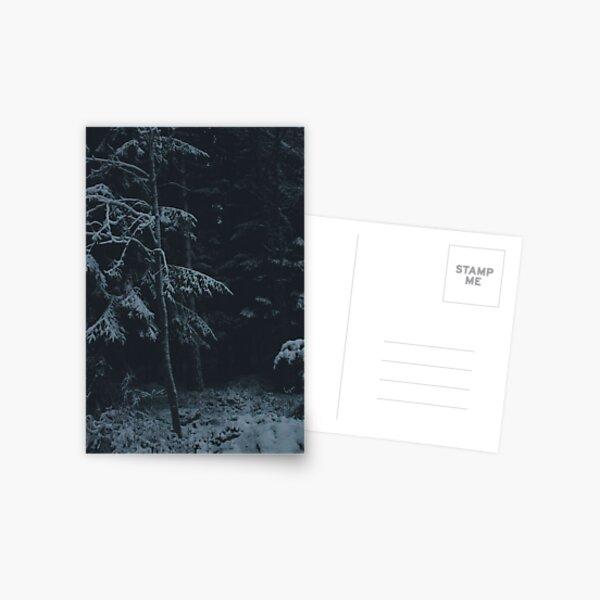 Winter Dark Postcard