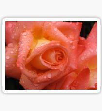 Rose Dew Sticker