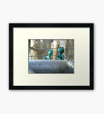 Frogs. Framed Print