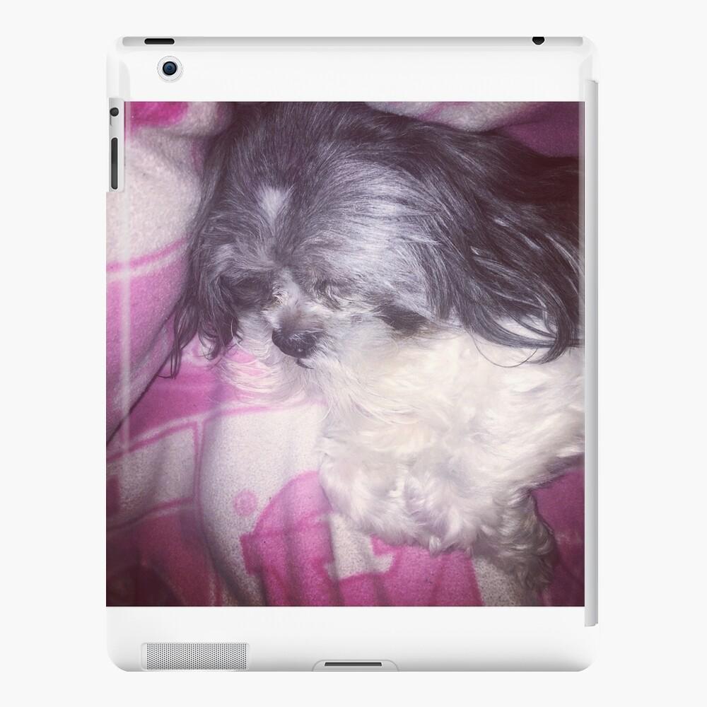 Puppy Love  iPad Case & Skin