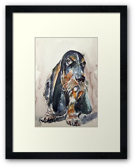 Basset hound by kovacsannabrigi