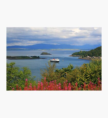 Oban Bay Photographic Print