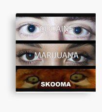 Skooma Canvas Print