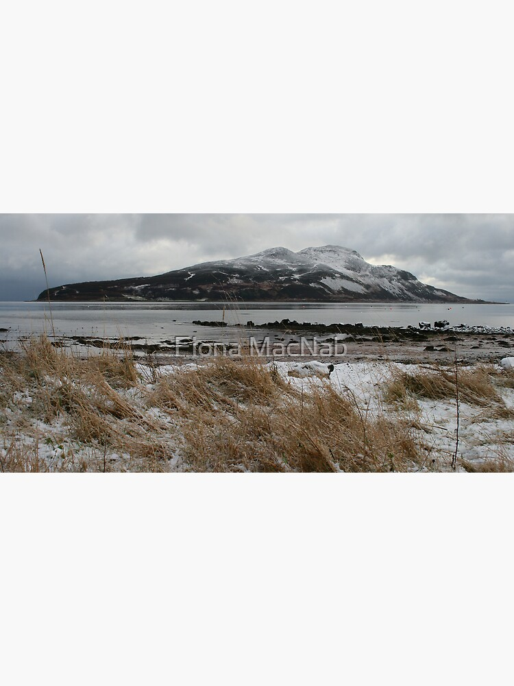 Holy Isle in winter by orcadia