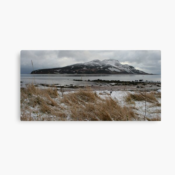 Holy Isle in winter Canvas Print