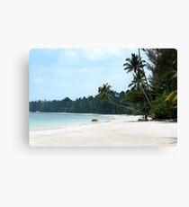 Tropical white sand beach palm trees and blue ocean. Canvas Print