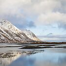 Lofoten Islands by Dominika Aniola