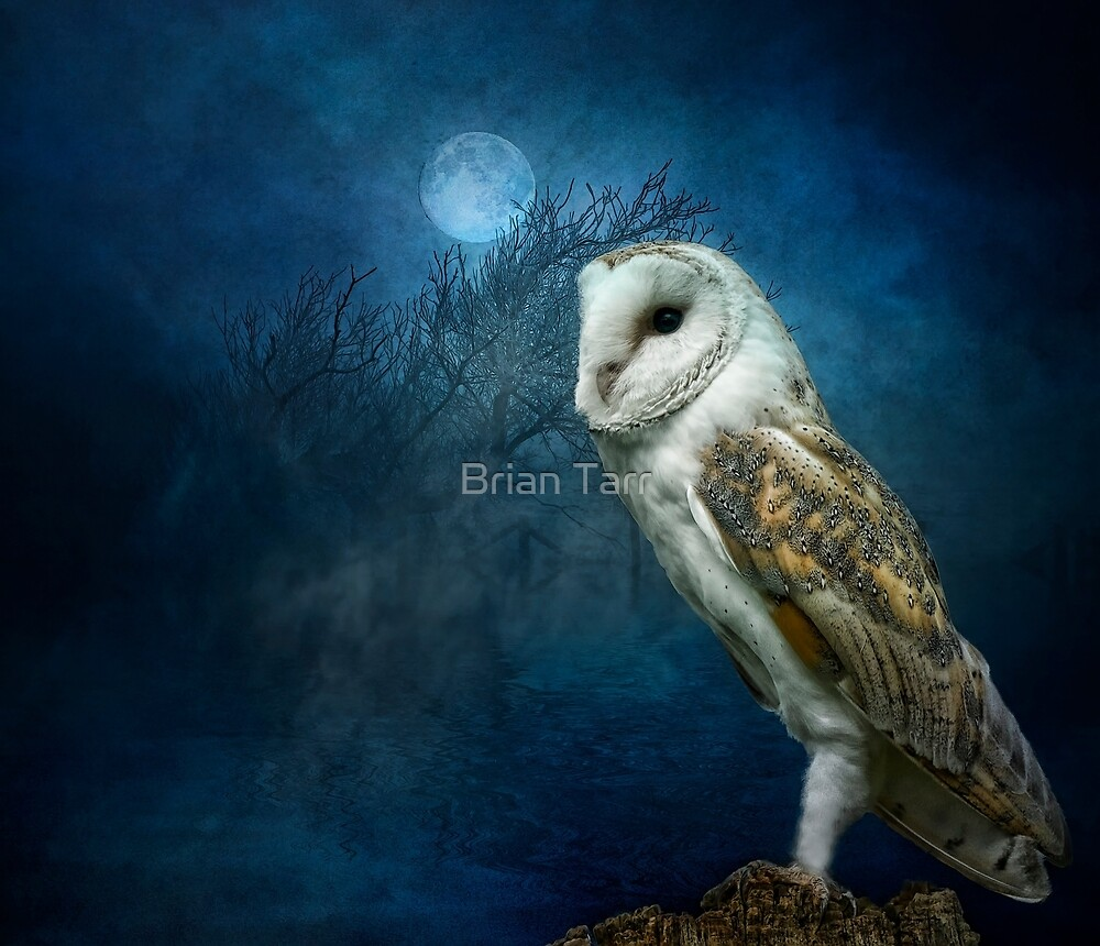 The Night Watchman by Tarrby