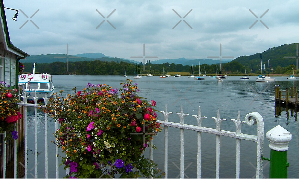 Bowness Flowers by Tom Gomez