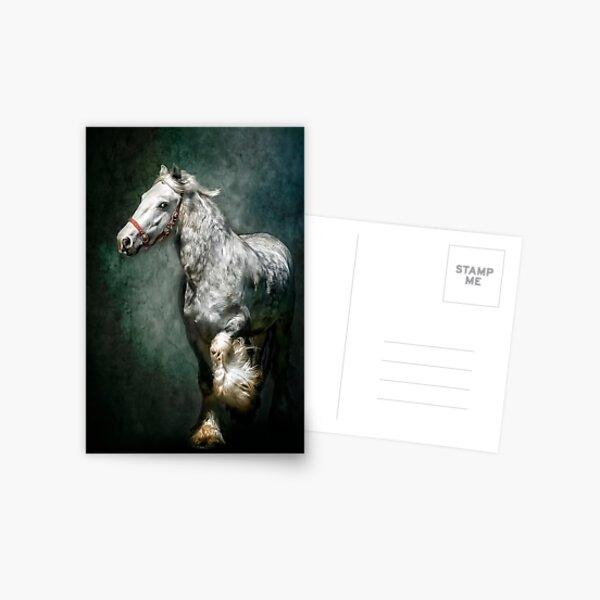The Silver Gypsy Postcard