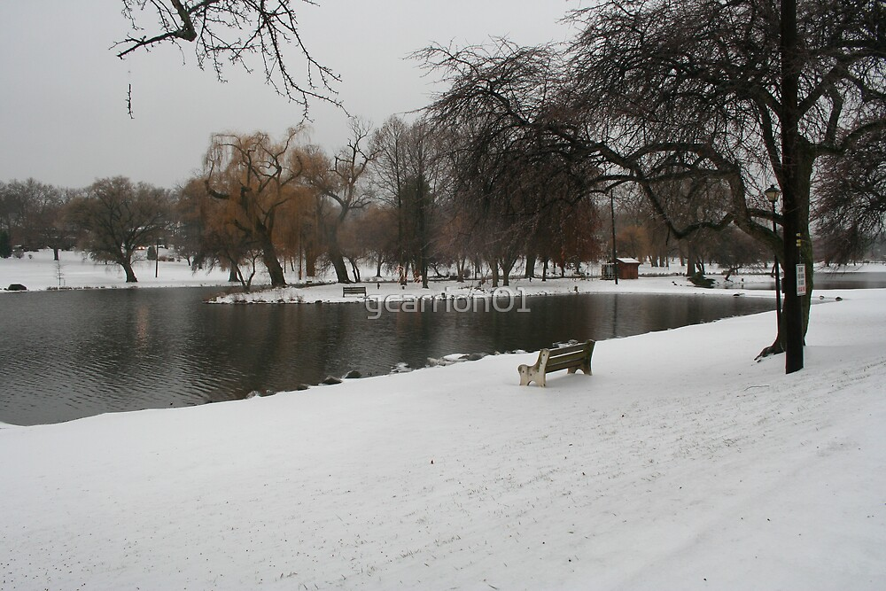 Snow at the Lake by gcarrion01