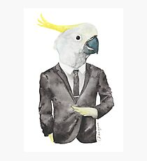 Cocky in a Tux Photographic Print