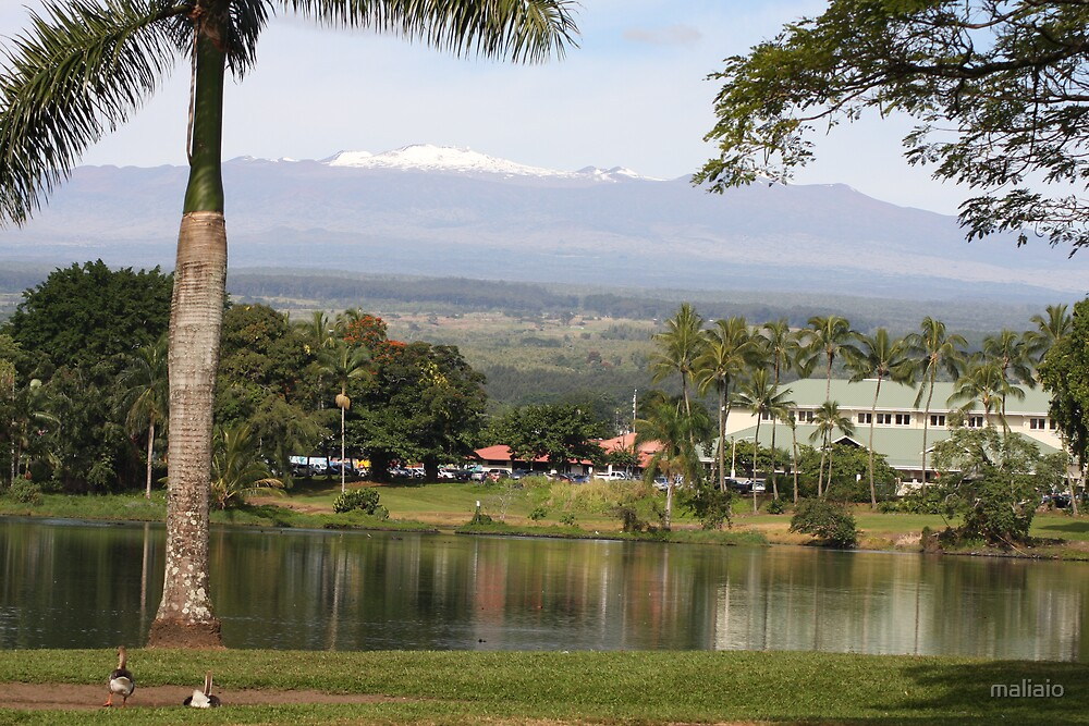 A View of Snow Covered Mauna Kea From Wailoa by maliaio