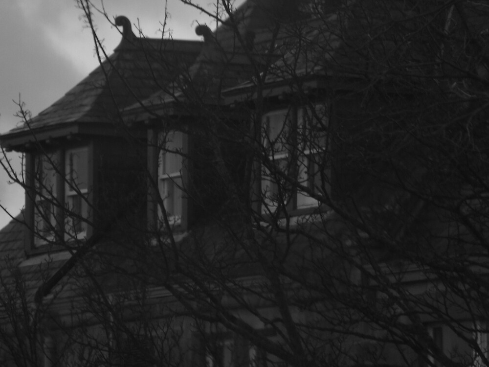 Haunted House  by meggiemoo