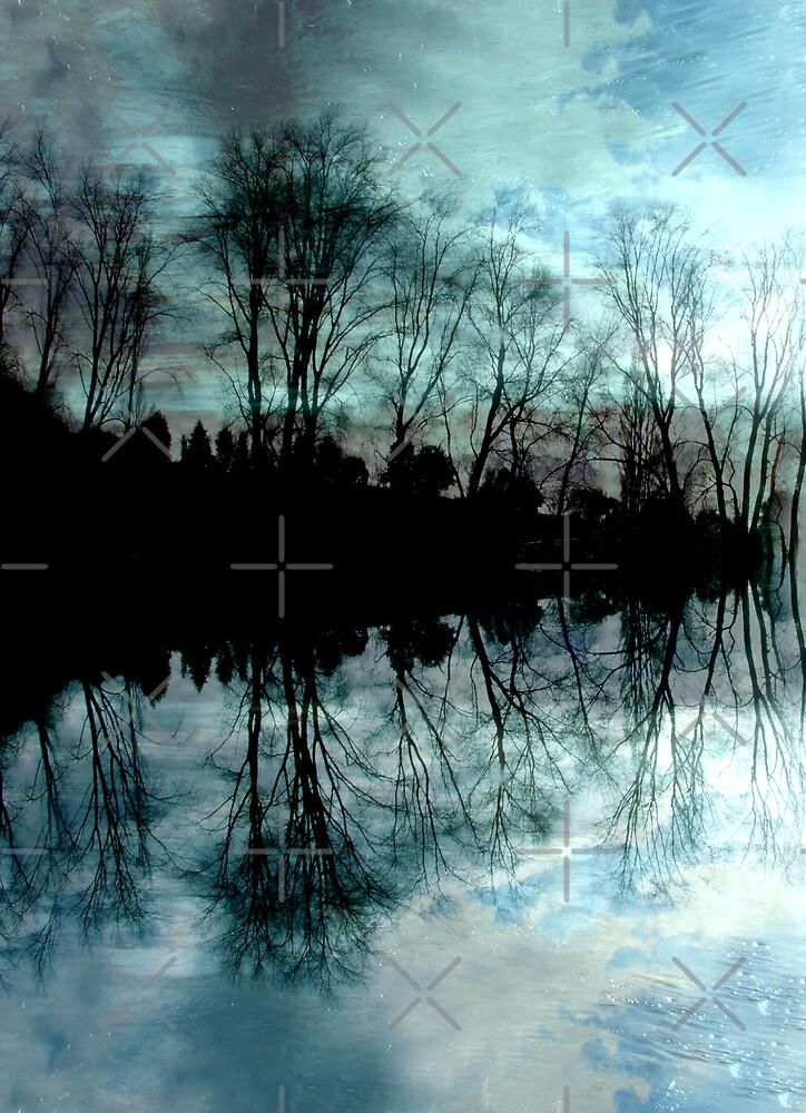 Winter Dreams by Varinia   - Globalphotos
