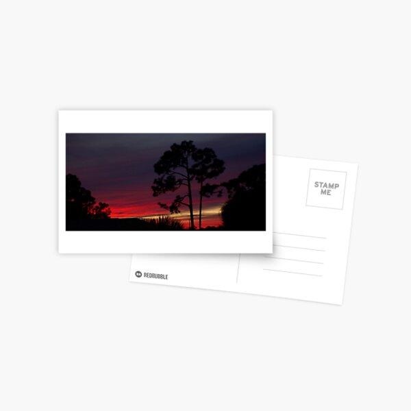 urban sunset Postcard